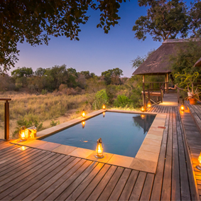 South Africa Honeymoon Packages Thornybush Game Reserve Thumbnail