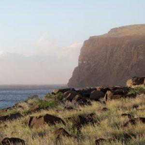 Hawaii Honeymoon Packages Four Seasons Resort Lanai Lanai's Rugged Coastline And Sea