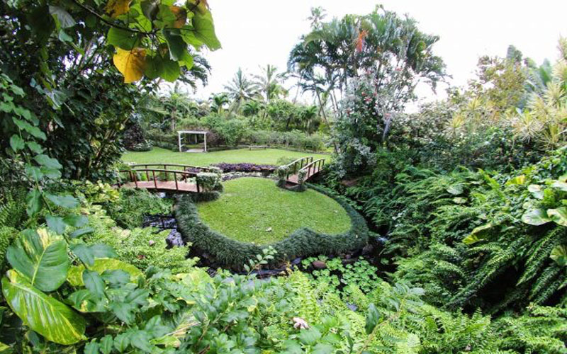 10 Reasons To Visit The Cook Islands Maire Nui Botanical Gardens1