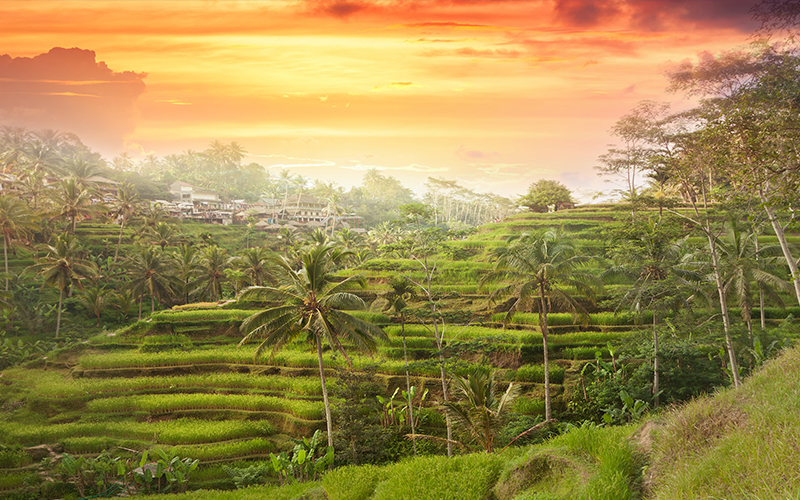 10 Best Places To See The Sun Set Around The World Blog Ubud, Bali