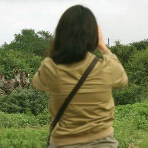 South Africa Honeymoon Packages Elandela Private Game Reserve Game Safari1