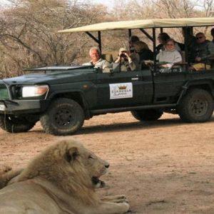 South Africa Honeymoon Packages Elandela Private Game Reserve Game Safari2