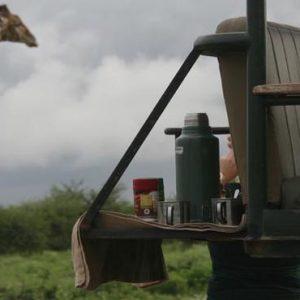 South Africa Honeymoon Packages Elandela Private Game Reserve Game Safari3