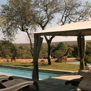 South Africa Honeymoon Packages Elandela Private Game Reserve Pool1