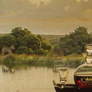South Africa Honeymoon Packages Elandela Private Game Reserve Safari