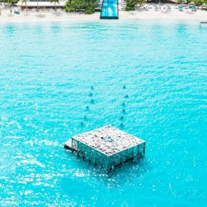 Maldives Honeymoon Packages Fairmont Maldives Sirru Fen Fushi Colarium Art Gallery