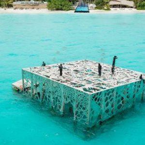 Maldives Honeymoon Packages Fairmont Maldives Sirru Fen Fushi Underwater Art Gallery