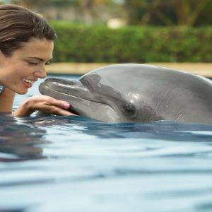 Mexico Honeymoon Packages Secrets Puerto Los Cabos Golf & Spa Resort Dolphin Tours
