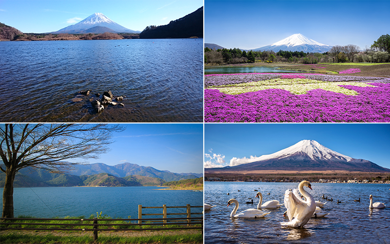The Best Places To Visit On Your Japan Honeymoon Fuji Five Lakes