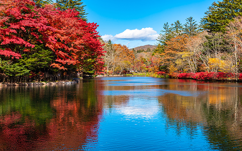 The Best Places To Visit On Your Japan Honeymoon Karuizawa