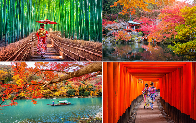 The Best Places To Visit On Your Japan Honeymoon Kyoto