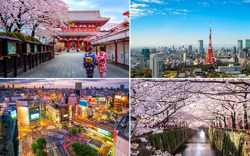The Best Places To Visit On Your Japan Honeymoon Tokyo