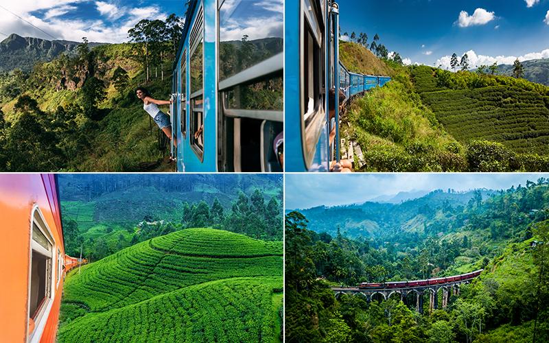Top Instagrammable Spots In Sri Lanka Kandy To Ella Train Journey