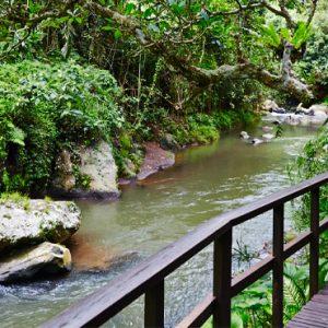 Bali Honeymoon Packages Maya Ubud Resort And Spa Bridge