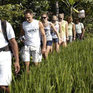 Bali Honeymoon Packages Maya Ubud Resort And Spa Trekking