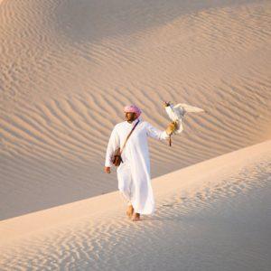Abu Dubai Honeymoon Packages Jumeirah Al Wathba Falconry Experience
