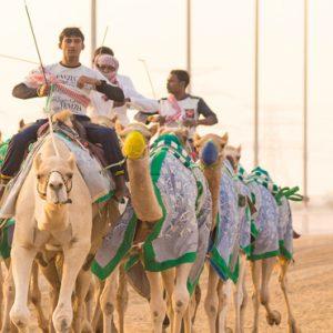 Abu Dubai Honeymoon Packages Jumeirah Al Wathba Tour Activity1