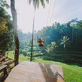 Best Of Ubud Tour With Jungle Swing Thumbnail