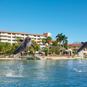 Mexico Honeymoon Packages Dreams Puerto Aventuras Resort & Spa Dolphins