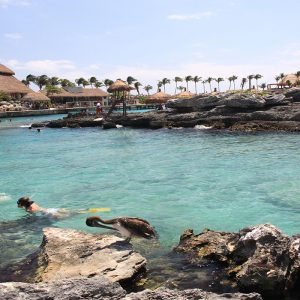 Mexico Honeymoon Packages Dreams Puerto Aventuras Resort & Spa Xcaret Park