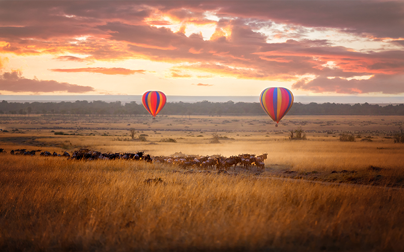 The Most Romantic Hot Air Balloon Rides In The World Blog Masai Mara Nature Reserve, Kenya