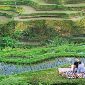 Bali Honeymoon Packages The Kayon Resort By Pramana Couple By The Rice Paddies