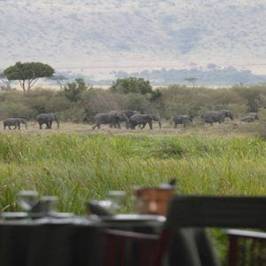 Kenya Honeymoon Packages Little Governors Elephants In The View