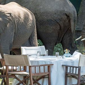 Kenya Honeymoon Packages Little Governors Elephants When Dining