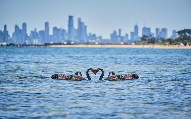 Romantic City Breaks For Valentine's Day Melbourne