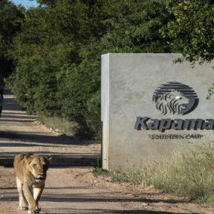 Safari Kapama Private Game Reserve South Africa Honeymoons