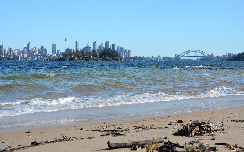 Top Romantic Things To Do In Sydney Milk Beach