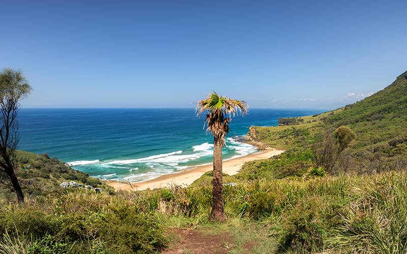 Top Romantic Things To Do In Sydney Royal National Park