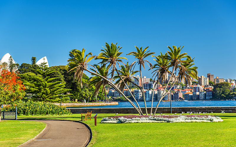 Top Romantic Things To Do In Sydney The Royal Botanic Gardens