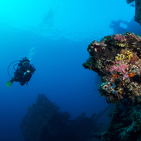 Dive A Shipwreck Best Things To Do In Bali Bali Honeymoons