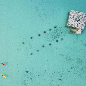 Underwater Museum Fairmont Maldives Best Things To Do In The Maldives Maldives Honeymoons